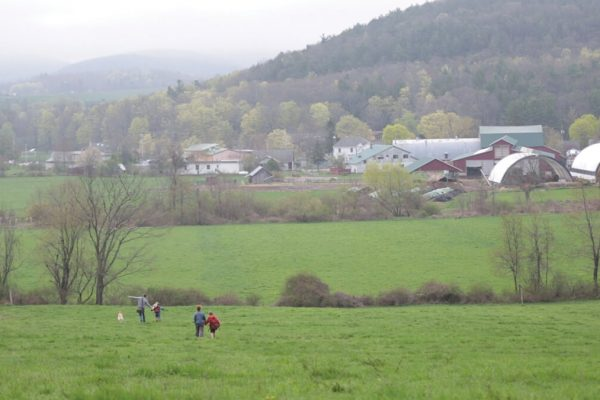 View of the Valley and Farm in Spring
